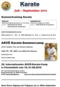 Sommertraining Karate
